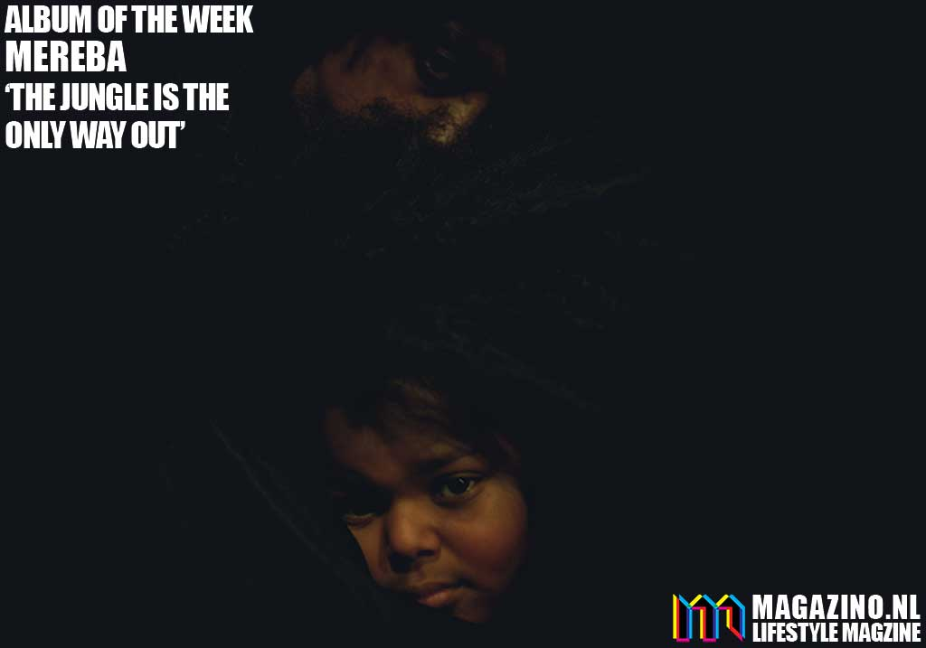 Mereba - The Jungle Is The Only Way Out