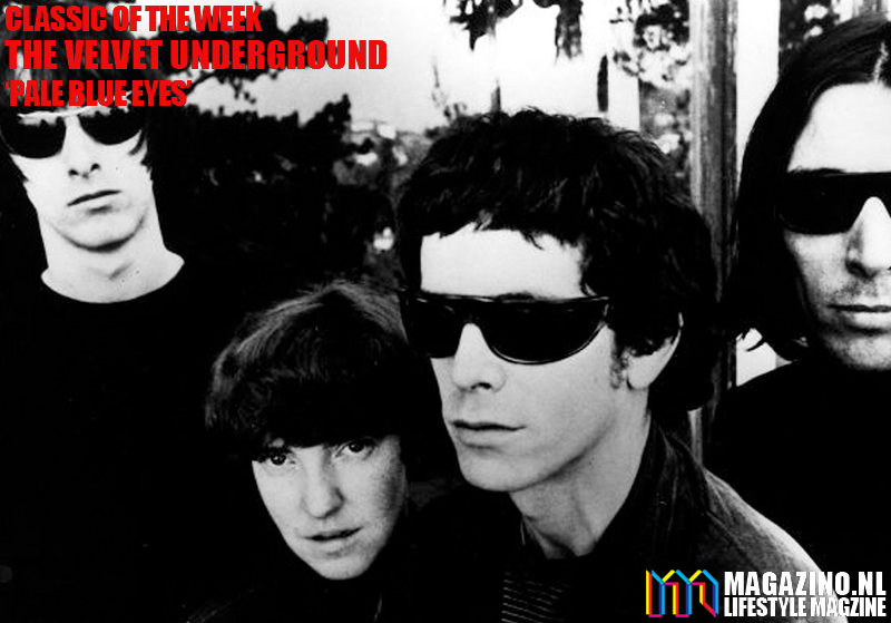 The Velvet Underground x MAGAZINO